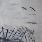 Pelicans-Swooping-Down-copy