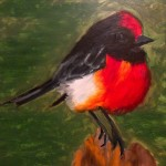 Red-capped-robin-copy.jpg