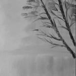 Trees-on-Misty-Lake.jpg