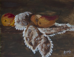 Pears on Cloth of Lace