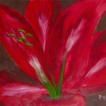 Red Lily with Green Stamen